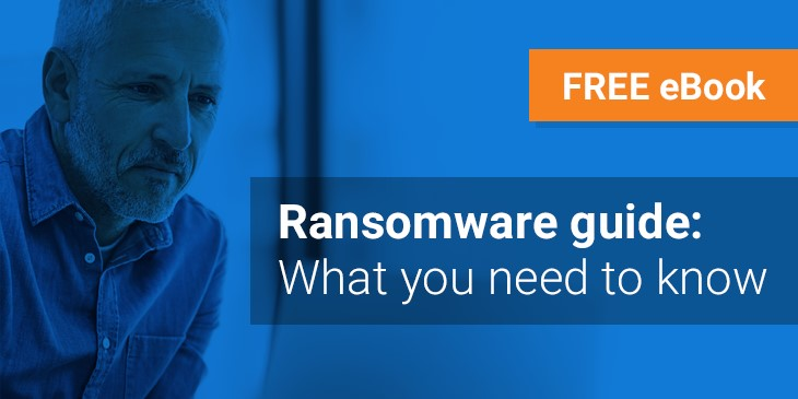 Understanding and dealing with ransomware